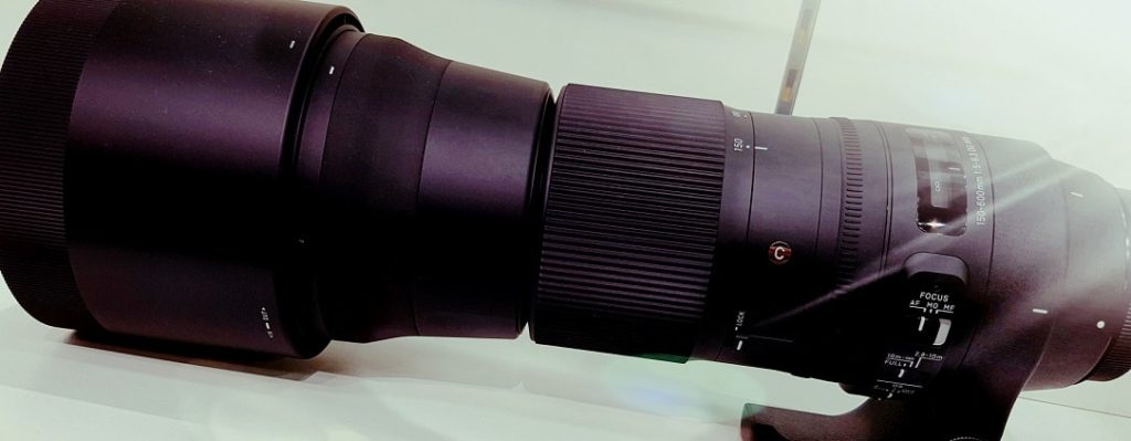 sigma 150-600mm DG OS contemporary review
